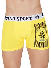 Cueca Boxer Top